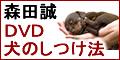 森田誠さんの犬の躾DVD